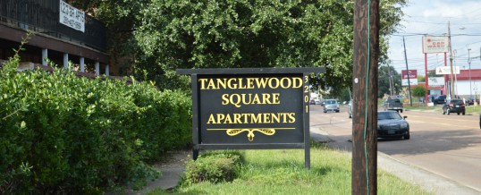 Investar USA acquires Tanglewood Square<BR><BR>